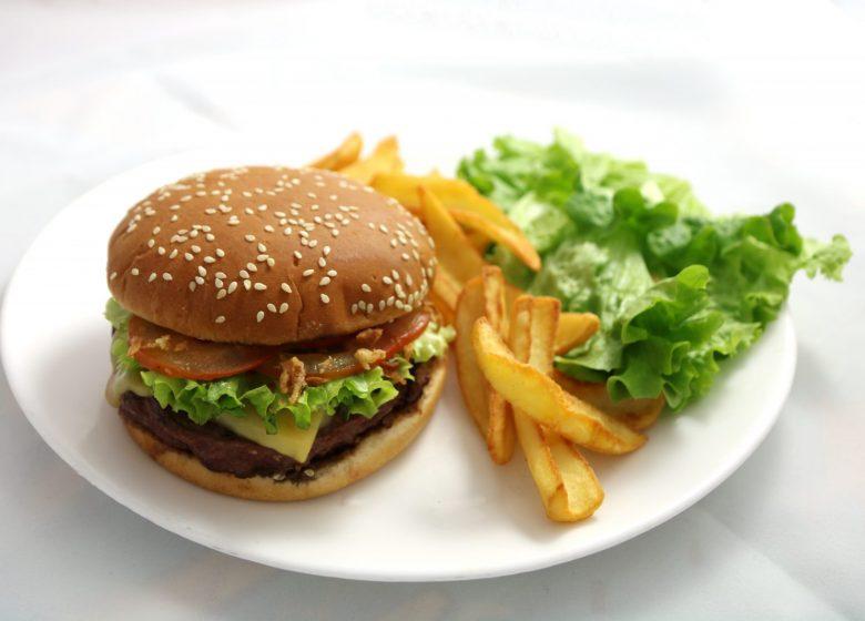Burger bison