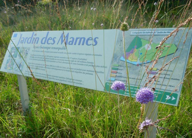 Sentier du Jardin des Marnes